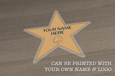 Hollywood Quot Walk Of Fame Quot Gold Star Floor Stickers